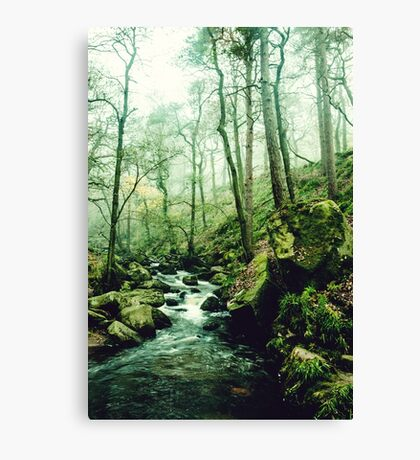 The Secrets of a Flowing Creative Mind Canvas Print