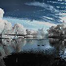 Magic Lake by BluAlien