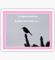 Congratulations!  A little bird told me... Sticker