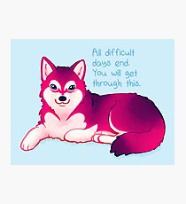 """All Difficult Days End"" Malamute Pup Photographic Print"