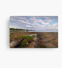 Low Tide at Rickett's Point, Beaumaris Metal Print