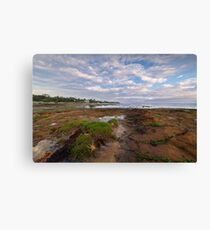 Low Tide at Rickett's Point, Beaumaris Canvas Print