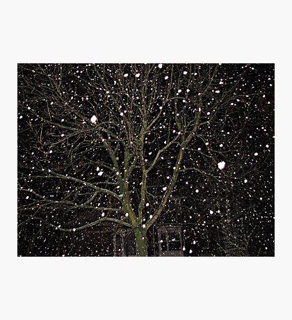 Falling Snow - Night Scene Fotodruck