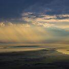 Early morning flight by Rudi Venter