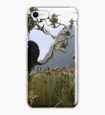 Currawong on Mt Gower, Lord Howe Island iPhone Case/Skin