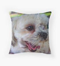 Maltese-shitzu Throw Pillow