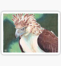 Philippine Eagle Sticker