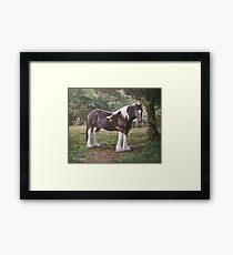 Big horse in field Framed Print