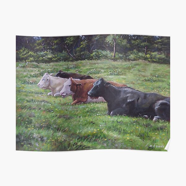 Cow line up in field Poster