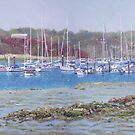 Boats at Hamble Marina by martyee