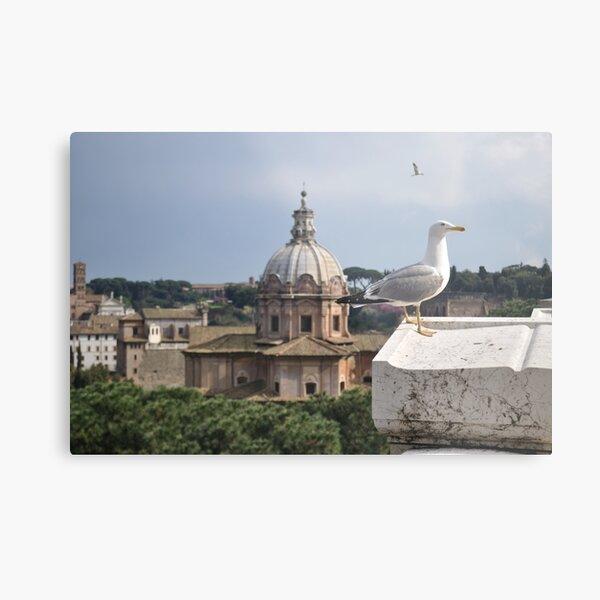 Bird over Rome Metal Print