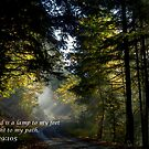 The Light of God by Charles & Patricia   Harkins ~ Picture Oregon