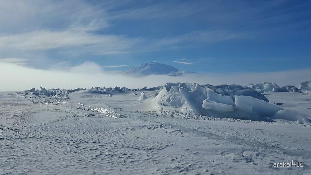 breathtaking Antarctica by Arakal Platt-Cassella