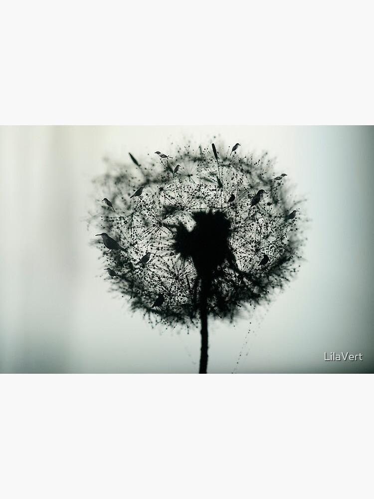 Dandelion Birds photographic by LilaVert