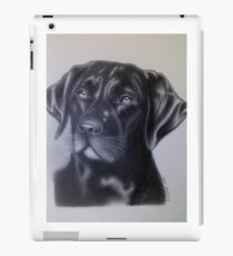 Chocolate Lab iPad Case/Skin