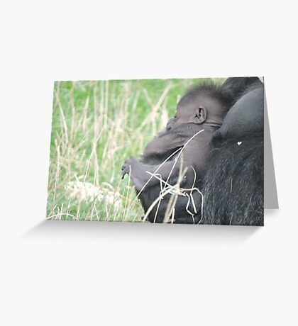Mother's Hold Greeting Card