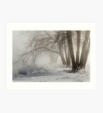 Etched By Snow - Sawhill Carvings Art Print