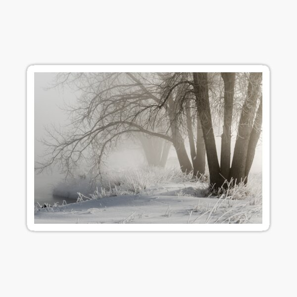 Etched By Snow - Sawhill Carvings Sticker