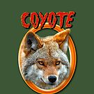 Coyote by Johnny Furlotte