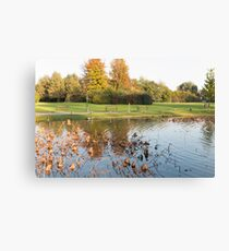 water reflection on lake Canvas Print