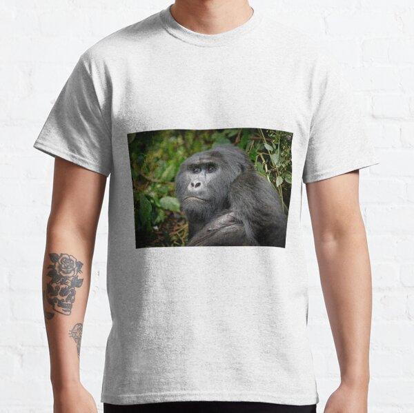 Portraet eines Silberruecken Berggorilla, Bwindi, Uganda Classic T-Shirt