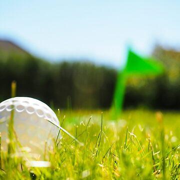 Golf ball in the rough by ArveBettum