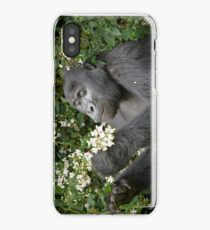 mountain gorilla eating flowers, Uganda iPhone Case