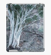 Red Gums in the Creek iPad Case/Skin