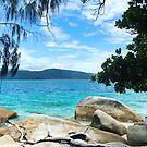Nudie Beach View by styles