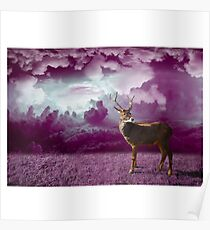 Purple Nature Photography - Reindeer Poster