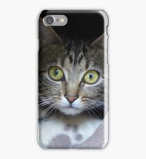 Circe the feral cat iPhone Case/Skin