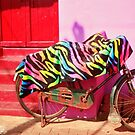 bicycle on the wall 1 by queenenigma