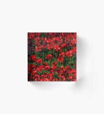 Poppy fields of remembrance for WW1 at Tower of London - square photo Acrylic Block