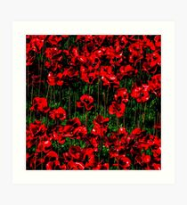 Poppy fields of remembrance for WW1 at Tower of London - square photo Art Print