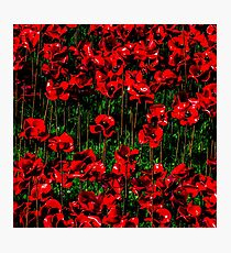Poppy fields of remembrance for WW1 at Tower of London - square photo Photographic Print