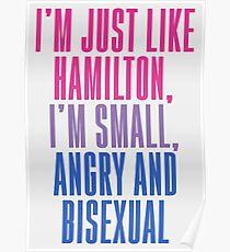 just like hamilton Poster