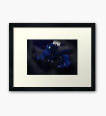 My little Pony: Friendship is Magic - Princess Luna - Night Flight Framed Print