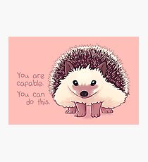 """""""You Are Capable"""" Hedgehog Photographic Print"""