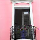Pink by Paula Bielnicka