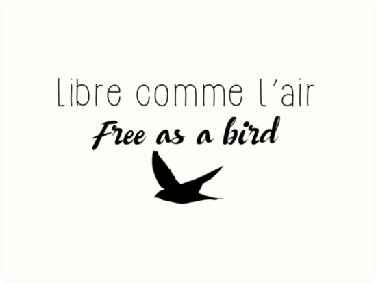 libre comme l 39 air free as a bird art prints by quotation park redbubble. Black Bedroom Furniture Sets. Home Design Ideas