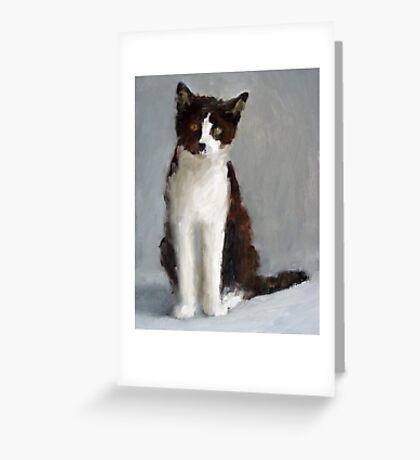 Tuxedo Kitty Sitting Greeting Card