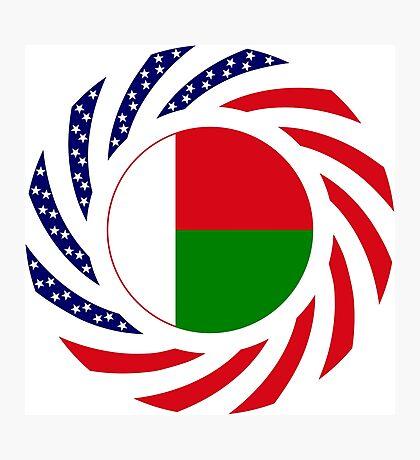 Madagascan American Multinational Patriot Flag Series Photographic Print