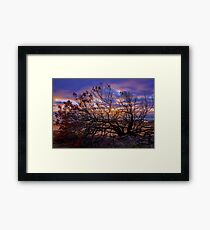 Sun and Fire - Great Ocean Road, Victoria Framed Print