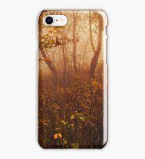Fairyland iPhone Case/Skin