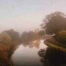 Morning Mist by Irene  Burdell