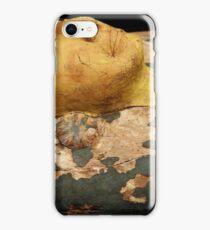 Sarcophagus  iPhone Case/Skin