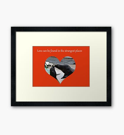 Sealing Love: The Strangest Places Framed Print