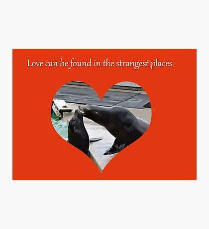 Sealing Love: The Strangest Places Photographic Print