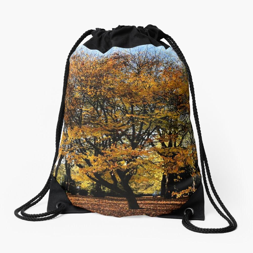 Autumnal scene Drawstring Bag