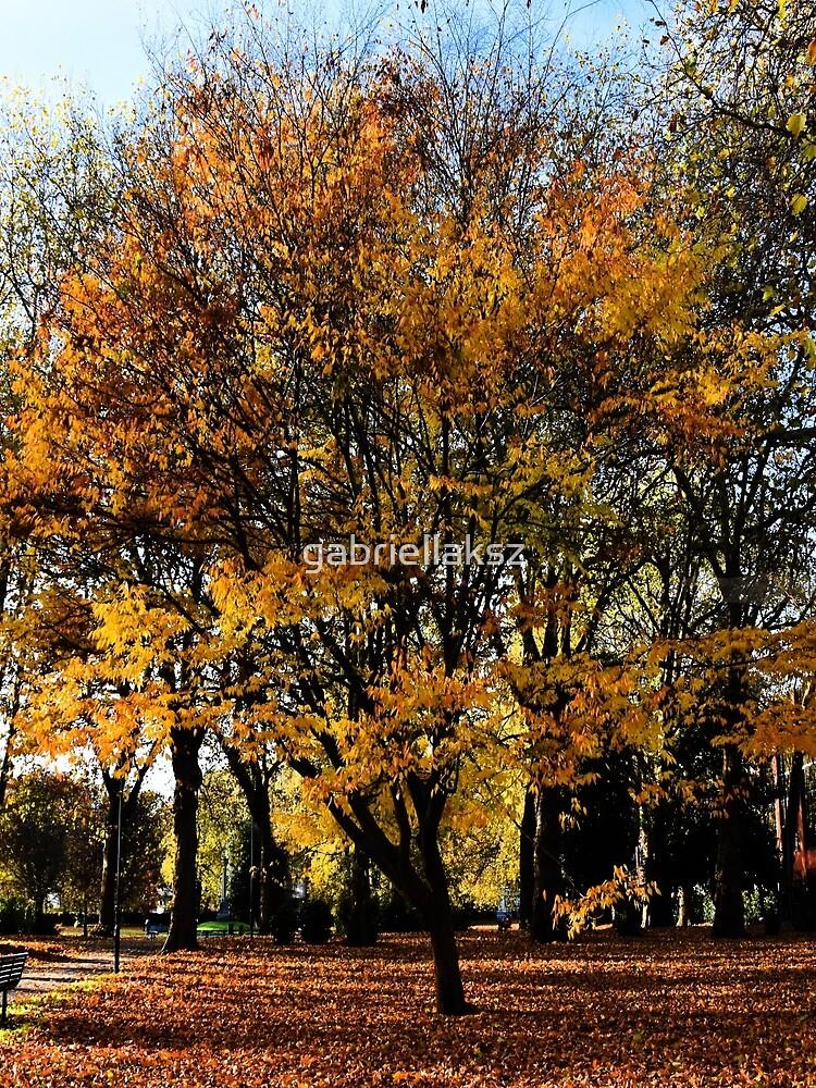 Autumnal scene by gabriellaksz